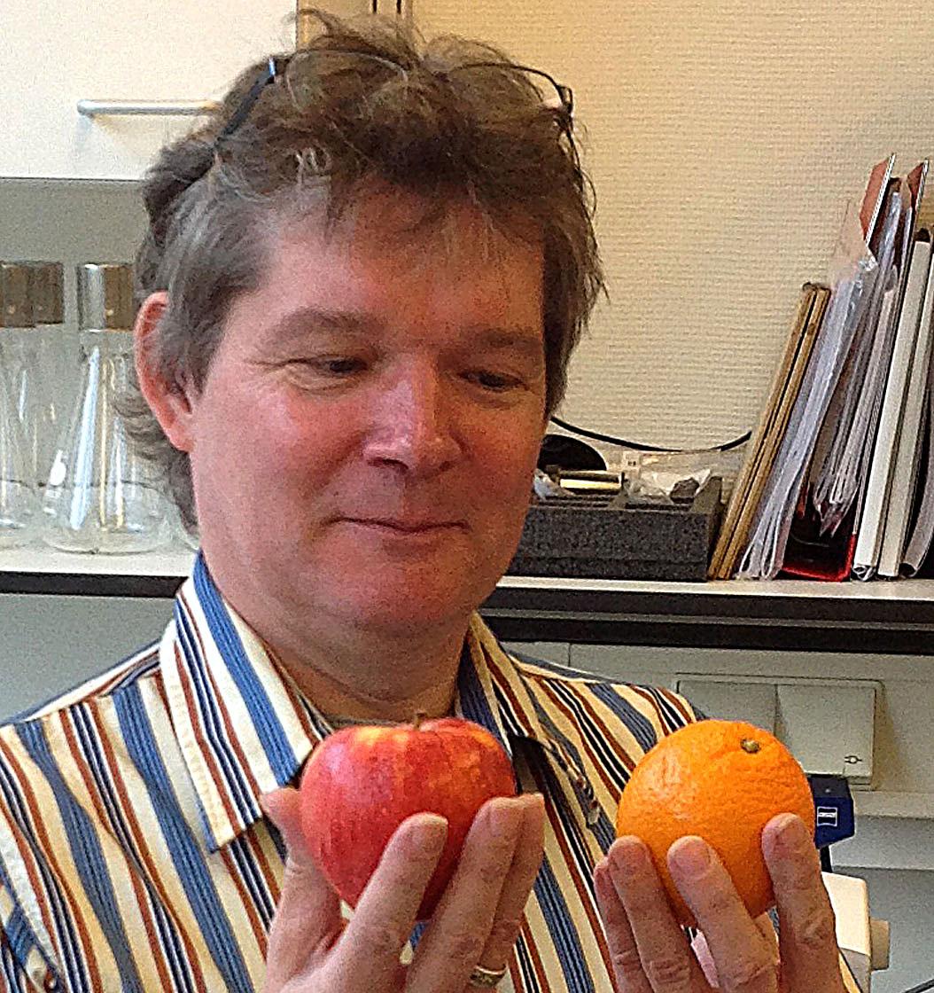 Jan Dijksterhuis